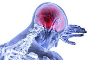Le paradigme de l'inflammation dans le stress